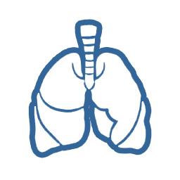 pulmon grafico